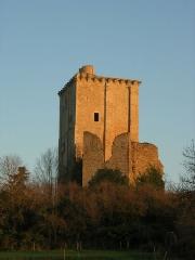 Château et église Notre-Dame -  Vue extérieure du Donjon de Moncontour depuis un champs. La façade ouest est visible.