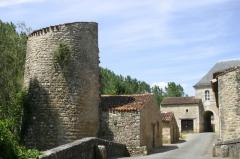 Abbaye - Abbatiale Saint Junien (Nouaillé-Maupertuis): fortifications, tours et courtines