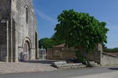 Eglise -  Eglise Saint-Pierre et tilleul dit