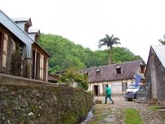 Habitation caféière La Grivelière - English: La Grivelière, Vieux-Habitants, Guadeloupe