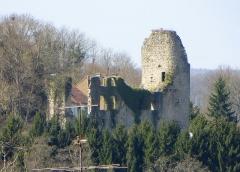 Château (ruines) - Deutsch: Die Burgruine in Frauenberg, Département Moselle, Lothringen