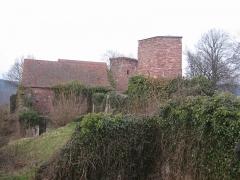 Ruines du château -  Chapelle du Château de Lutzelbourg (France)