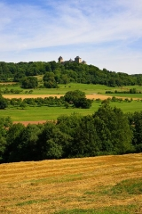 Ruines du château de Mensberg, dit aussi château de Malbrouck - English:   This hill castle stands out visibly on the tip of the cone-shaped Meinsberg in the Three-country-trinagle France-Germany-Luxembourg. It is listed as a Monument historique.