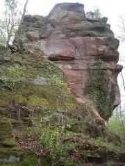 Ruines du château de Falkenstein - Ruine du Helfenstein (Falkenstein)