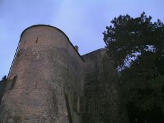 Château-fort (restes) - Deutsch: Rodemack, Burgmauer