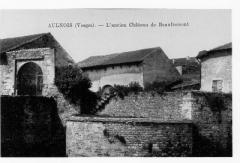 Vestiges du château - English: Castle of Beaufremont