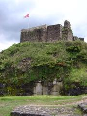 Château - Ruines du château d'Épinal.
