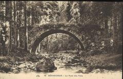 Pont dit Pont-des-Fées (également sur commune de Xonrupt-Longemer) -  Pont des fées à Gérardmer