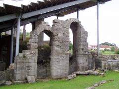 Amphithéâtre romain (ruines) -  Vue des arches supportant les gradins de l'amphithéâtre de Grand (Vosges) - France