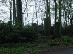 Ancienne abbaye d'Anchain - Français:   Vestiges de l\'Abbaye d\'Anchin à pecquencourt