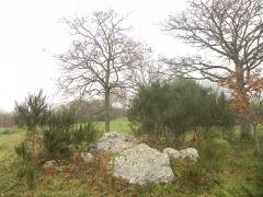 Dolmen dit de la Briordais - English: Dolmen de la Briordais, Saint-Brévin-les-Pins, Loire-Atlantique, France.