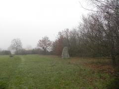 Menhir du Plessis-Gamat - English: Menhir du Plessis-Gamat, Saint-Brévin-les-Pins, Loire-Atlantique, France. General view.
