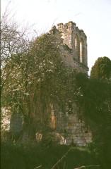 Eglise Saint-Maxenceul à Cunault - Deutsch:   Cunault, Ruine
