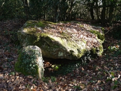 Dolmen de la Petifaie - English:   Dolmen de La Ferrière-de-Flée