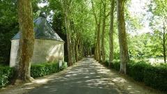 Château de Courtanvaux - Français:   Château de Courtanvaux: chemin d\'accès