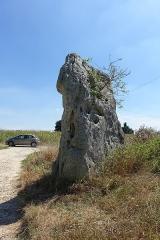 Menhir dit La Pierre Fiche - Nederlands: Menhir de la Pierre Fiche (Duneau) in department Sarthe
