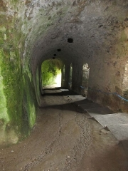 Château - English: Apremont: knights vault