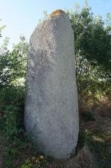 Menhir de la Chenillée - Français:   Le menhir de la Chenillée.