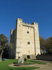 Château fort - Français:   Donjon de Chambois
