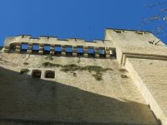 Château fort - Français:   Couronnement du donjon de Chambois