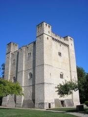Château fort - Français:   Chambois (Normandie, France). Le donjon.