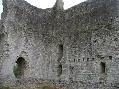 Château -  Chateau de Domfront