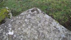 Dolmen dit Pierre-aux-Bignes - Français:   Angle du dolmen des Bignes