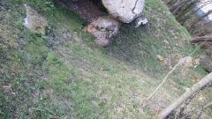 Dolmen dit Pierre-aux-Bignes - Français:   Pierres de Bignes placées en forme de croix