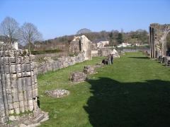 Ancienne abbaye -  Ruine Abbaye(Saint-Evroult-Notre-Dame-du-Bois, Orne ,France)