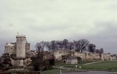 Château fort, actuellement collège -  Calvados Falaise Chateau 041996