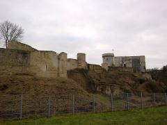 Château fort, actuellement collège -  Calvados Falaise Chateau Donjon 25012015