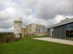 Château fort, actuellement collège -  Calvados Falaise Chateau Guillaume Le Conquerant Basse-Cour Vue Donjon 23042016