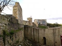 Château fort, actuellement collège -  Calvados Falaise Chateau Guillaume Le Conquerant Basse-Cour Vue Remparts Nord 23042016
