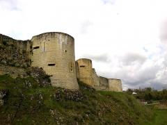 Château fort, actuellement collège -  Calvados Falaise Chateau Guillaume Le Conquerant Murs Nord 23042016
