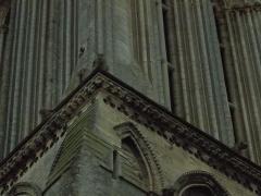 Eglise - Français:   corniche inférieure de la tour, frise de fleurs crucifères, acrotères surplombant la corniche