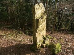 Menhir dit la Roche Piquée - Français:   Menhir de la Roche Piquée à St Germain le Vasson (Calvados)