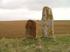 Trois menhirs dits Menhirs des Longrais - Français:   Menhirs des Longrais à Soumont Saint Quentin (Calvados)
