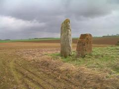Trois menhirs dits Menhirs des Longrais - Français:   Menhirs des Longrais