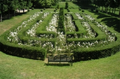 Château de Vendeuvre -  The Maze