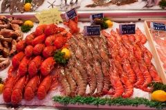 Halle aux poissons dite poissonnerie -  Langoutes lobsters and prawns on a stall in the fish market..