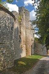 Château des ducs de Bourgogne (ruines) - Deutsch: Château de Châtillon-s-S, Burgruinen