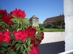 Château - Français:   Cour nord du château de Frôlois vue sur le pigeonnier.