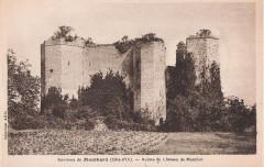 Château de Montfort (ruines) -