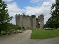 Château de Montfort (ruines) -  Façade du château de Montfort
