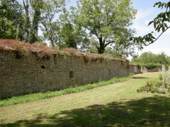 Château de Montfort (ruines) -  Les remparts du château de Montfort