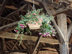 Halle aux grains - English: Flowers in the old market hall carpentry