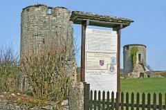 Château - Français:   Ruines du château ducal de Villaine-en-Duesmois