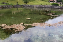 Abbaye du Val des Choux -  Pond