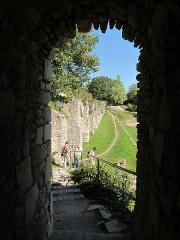 Remparts (restes) -  La Charite, Defensive Wall