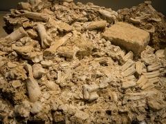 Gisement préhistorique - Deutsch: Sogenanntes